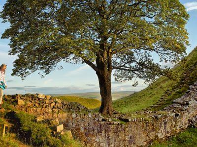 hadrians wall tour england